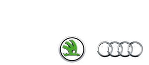 Logo-Sagrini-marchi-2b